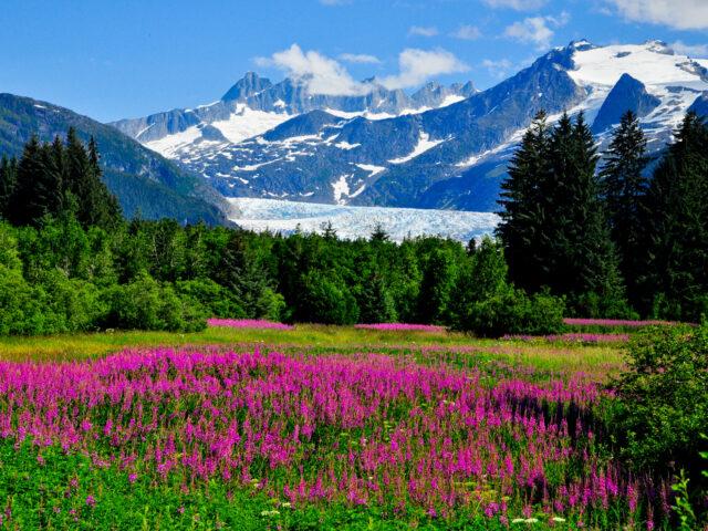 https://goiwv.com/wp-content/uploads/2021/08/Alaska_AdobeStock_138501742-640x480.jpeg